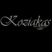 ΕΛΑΤΗ: KOZIAKAS HOTEL